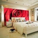 Фотообои с красной розой