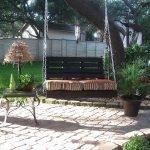 Зона отдыха под деревом